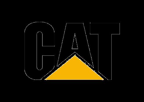 cat-new
